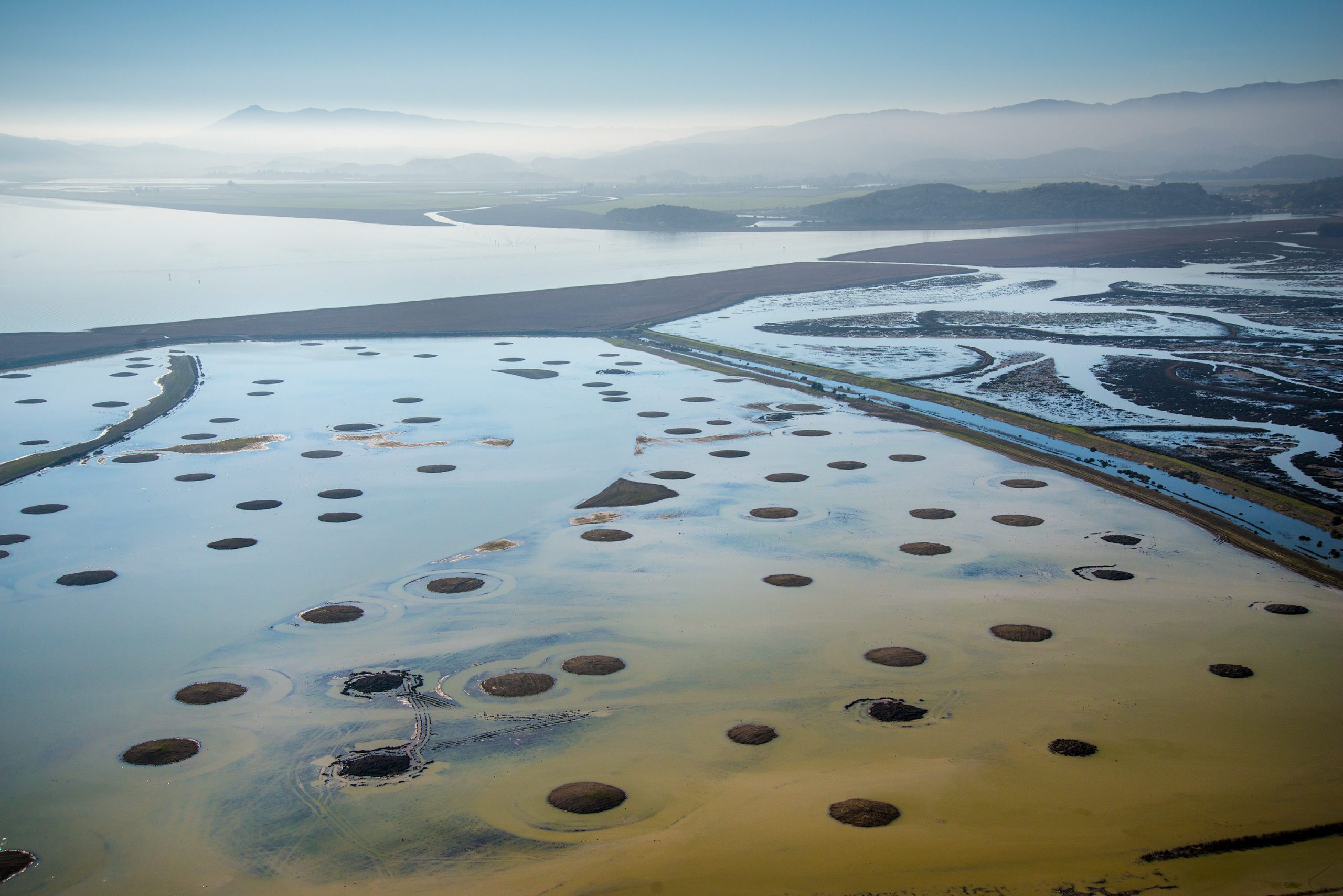 Sears Point is the site of a Natural and Nature-Based Features wetland restoration project by the U.S. Army Corps of Engineers in San Pablo Bay, Sonoma County, Calif. Photo by U.S. Army Corps of Engineers.